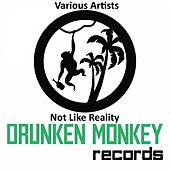 Play & Download Not Like Reality by Various | Napster