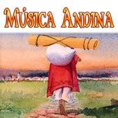 Música Andina by Various Artists
