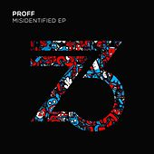 Misidentified - EP by Various Artists