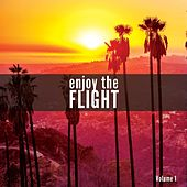 Enjoy The Flight, Vol. 1 (A Smooth Airplane Music Journey) by Various Artists