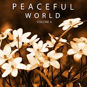 Play & Download Peaceful World, Vol. 4 (Just Calm And Relax Your Soul) by Various Artists | Napster