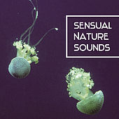 Sensual Nature Sounds – Stress Relief, Soft New Age, Chilled Music by Echoes of Nature
