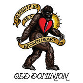 No Such Thing as a Broken Heart by Old Dominion