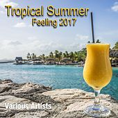 Tropical Summer Feeling 2017 by Various Artists