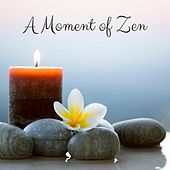 A Moment of Zen by Nature Sounds