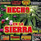 Hecho en la Sierra, Vol. 1 by Various Artists