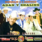 Homenaje a 2 Compitas Adan y Shalino by Various Artists