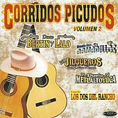 Play & Download Corridos Picudos, Vol. 2 by Various Artists | Napster