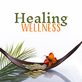 Play & Download Healing Wellness – Relaxation Music for Spa, Massage, Stress Relief, Pure Waves, Soothing Sounds for Rest by Relaxation and Dreams Spa | Napster