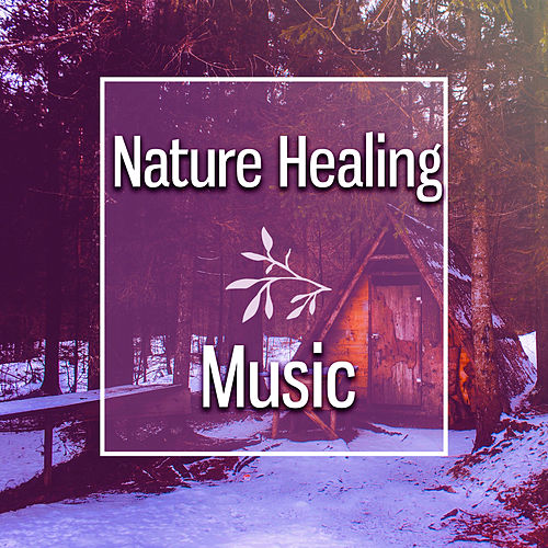 Play & Download Nature Healing Music – Soft Music to Relax, Rest with Nature, Soothing Waves of Calmness by Nature Tribe | Napster