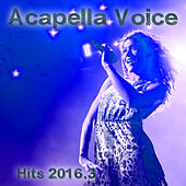 Acapella Voice Hits 2016.3 by Various Artists