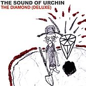 The Diamond (Deluxe) by The Sound of URCHIN