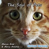 Play & Download The Soul of Pets by Marcos Ariel | Napster