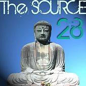 The Source Volume 28 by Various Artists