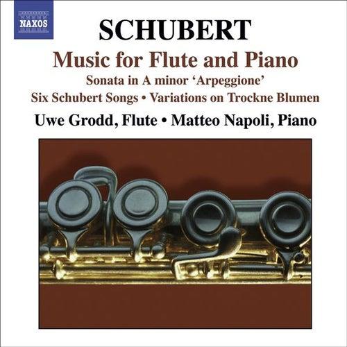 Play & Download Franz Schubert: Arpeggione Sonata by Matteo Napoli | Napster