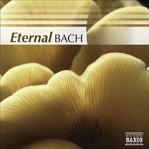 Play & Download BACH (Eternal) by Various Artists | Napster