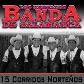 15 Corridos Norteños by Los Hermanos Banda De Salamanca
