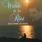 Agua entre los dedos. Lo mejor de Waldo de los Ríos di Waldo De Los Rios