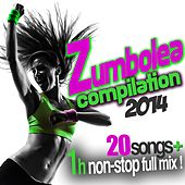 Zumbolea Compilation 2014 by Various Artists