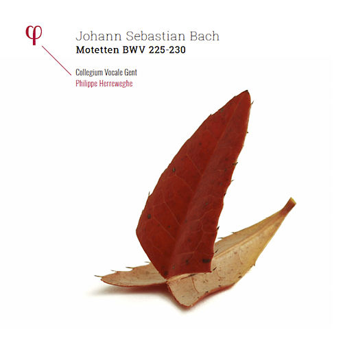 Bach: Motets by Collegium Vocale Gent