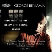 Benjamin: Into the Little Hill by Various Artists