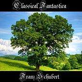 Play & Download Classical Fantastica: Franz Schubert by Richard Tauber | Napster