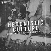 Hedonistic Culture Vol. 1 by Various Artists