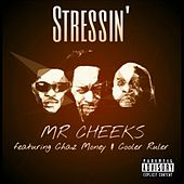 Play & Download Stressin' (feat. Cooler Ruler & Chaz Money) by Mr. Cheeks | Napster