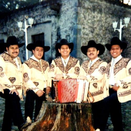 Ocho Columnas by Los Broncos De Reynosa