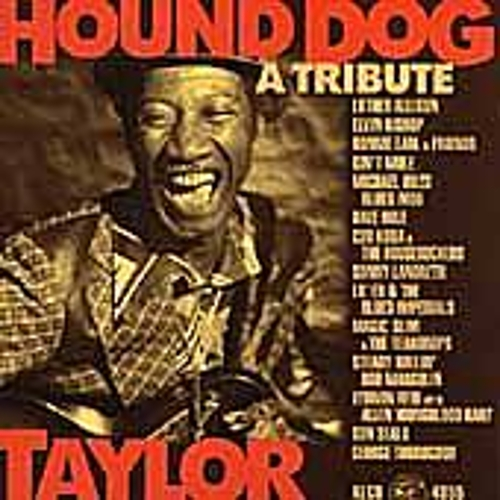Play & Download Hound Dog Taylor: A Tribute by Various Artists | Napster