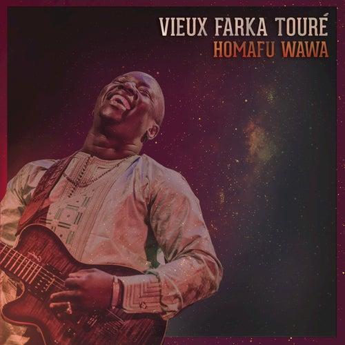Homafu Wawa by Vieux Farka Touré