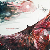 Red Bird by Outrun The Sunlight