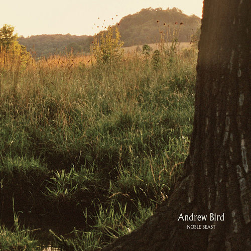 Play & Download Noble Beast by Andrew Bird | Napster
