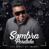 Sombra Perdida by Luis Miguel del Amargue