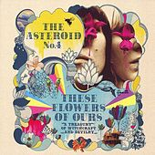 Play & Download These Flowers of Ours by The Asteroid No. 4 | Napster