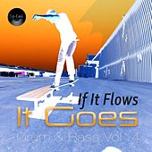 If It Flows It Goes, Vol. 4 by Various Artists