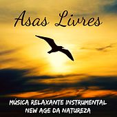Asas Livres - Música Relaxante Instrumental New Age da Natureza para Equilibrar Chakras Ser Mais Feliz Aula de Yoga e Manter A Calma by Alma