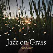 Play & Download Jazz on Grass by Various Artists | Napster