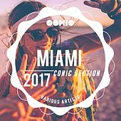 Miami 2017: Conic Section by Various Artists