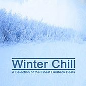 Winter Chill - A Selection of the Finest Laidback Beats & DJ Mix by Various Artists