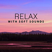 Play & Download Relax with Soft Sounds – Healing Therapy, Easy Listening, New Age Relaxation, Rest a Bit by Wellness | Napster
