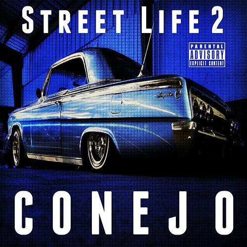 Street Life 2 by Conejo