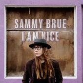 I Am Nice by Sammy Brue