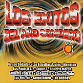 Play & Download Los Exitos del Ano Sonidero by Various Artists | Napster
