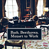 Bach, Beethoven, Mozart to Work – Classical Music for Study, Brain Power, Deep Focus, Stress Relief, Easier Exam de Einstein Effect Collection