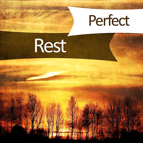 Play & Download Perfect Rest – New Age Music, Peaceful Mind, Soft Music for Relaxation, Stress Free, Soothing Flute by Relax - Meditate - Sleep | Napster