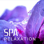 Play & Download Spa Relaxation -  Relaxing Music for Massage, Spa, Deep Massage, Relaxing Music Therapy, Sounds of Nature, Reiki, Zen by Sounds of Nature Relaxation | Napster