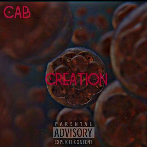 Creation by The Cab