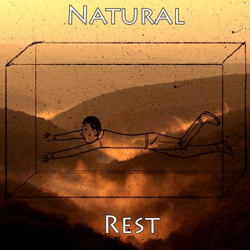Natural Rest de The Rest