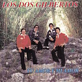 Tu Amor Y Mi Amor by Los Dos Gilbertos